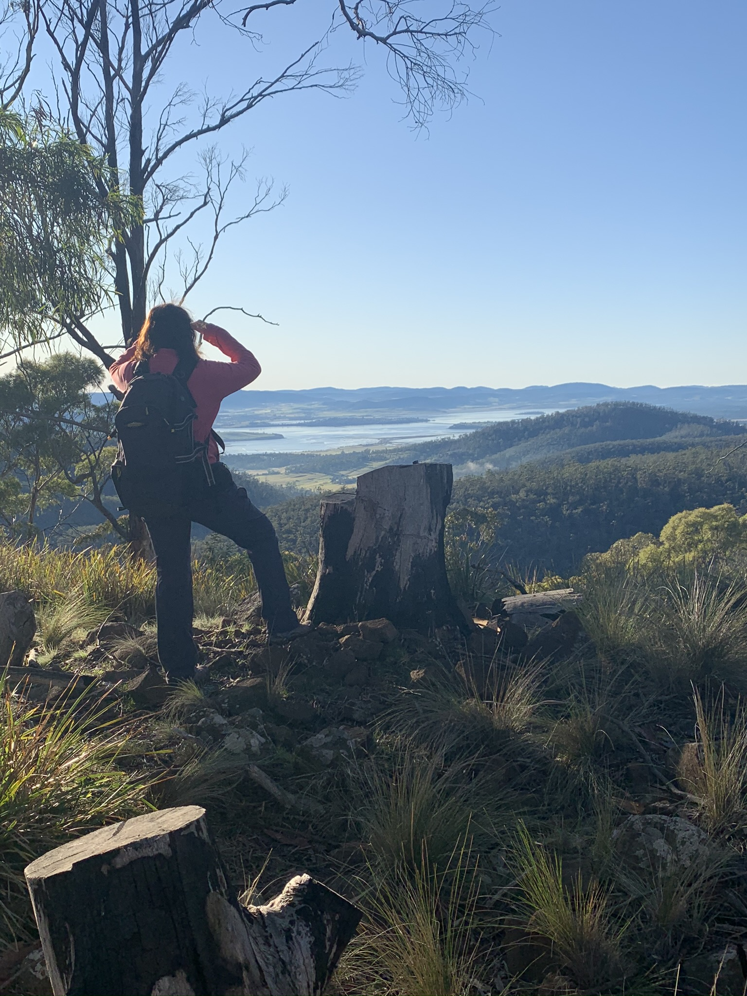 the view from Flagstaff Hill, Meehan Range